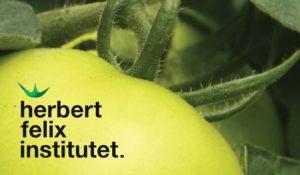 Herbert Felix Institutet
