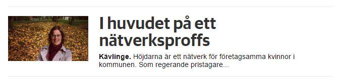 I huvudet på ett nätverksproffs - Sydsvenskan 20141112