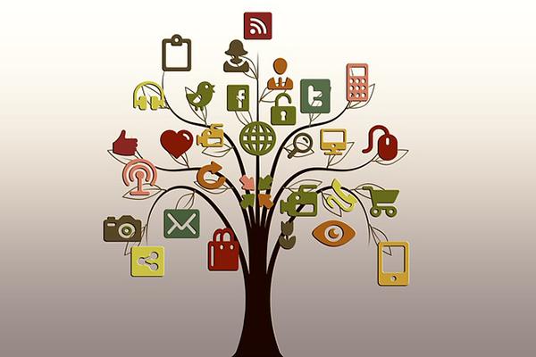 Hemsida och sociala medier