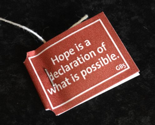 Hope is a declaration of what is possible. #tefilosofi
